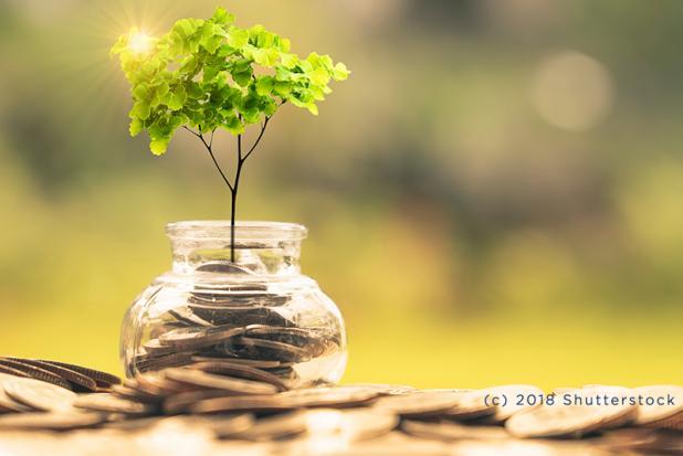 Neue Transparenzpflichten für Finanzmarktteilnehmer - Nachhaltigkeit